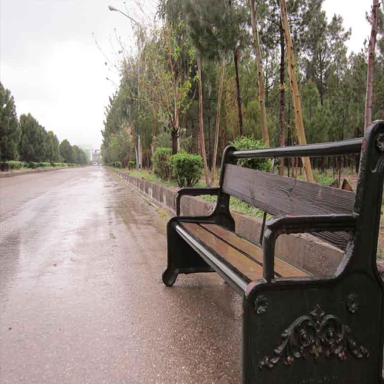 باران پاییزی در دانشگاه مفید